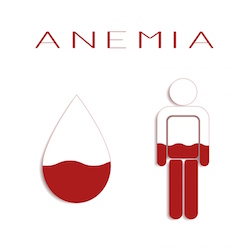 Anemia is a blood disorder