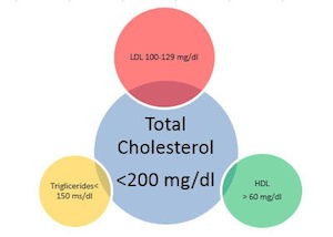 Ideal cholesterol levels